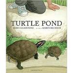 【预订】Turtle Pond 9781554989102