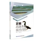 泥鳅高效养殖技术问答(特色养殖新技术丛书)