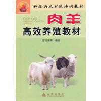 肉羊高效养殖教材――科技兴农富民培训教材