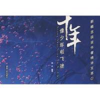 十年:像少年啦飞驰/新概念获奖作者精华文萃1 9787543851801 黄兴 湖南人民出版社