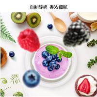 九阳 SN-10J91酸奶机家用小型全自动自制酸奶机发酵机