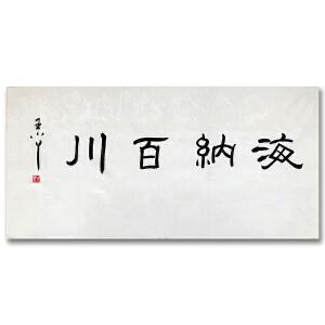 中国著名中央电视台节目主持人 王小丫《海纳百川》DW158