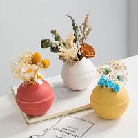 马卡龙色球形多肉小花瓶北欧ins陶瓷仿真植物盆栽插花摆件装饰品