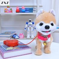 儿童电动玩具狗泰迪牵绳小狗狗充电仿真毛绒会走叫跑遥控智能宠物