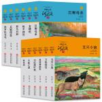 动物小说大王沈石溪品藏书系 升级版(橙蓝特辑 套装共12册)