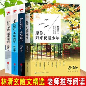 林清玄散文集(全4册) 愿你,归来仍是少年
