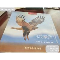 [旧书二手书8成新]飞羽瞬间2:中国野生鸟类精彩图片选(第二卷)