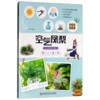 空气凤梨:无土也可养活的懒人植物,王伟,黑龙江科学技术出版社,9787538898996