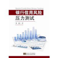 银行信用风险压力测试(电子书)