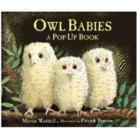 Owl Babies - Pop-Up