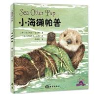 小海獭帕普 (加)维多利亚 迈尔斯 海洋出版社 9787502797935 新华书店 正版保障