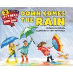 【预订】Down Comes the Rain