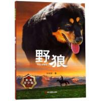 野狼(影像青少版),许廷旺,浙江摄影出版社【新书店 正版书】