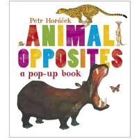 Animal Opposites 英文原版动物反义词立体书