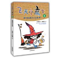 飞天小魔女6,林秀穗,山东教育出版社,9787532897018