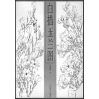 【新书店正版包邮】白描玉兰图 范新国 广西美术出版社 9787806740552