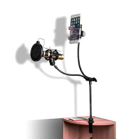 悬臂支架 麦克风手机直播桌面防震电容麦架子 主播话筒支架c 【质感黑】金属支架+手机架+防喷网