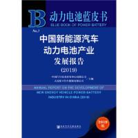 动力电池蓝皮书:中国新能源汽车动力电池产业发展报告(2019),中国汽车技术研究中心 大连松下汽车能源有限公司,社会科
