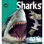 【预订】Sharks 9781416938675