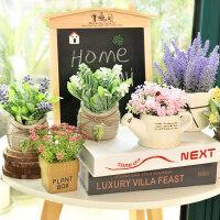仿真植物装饰北欧绿植室内盆栽客厅摆件假花卉多肉小盆景家居摆设抖音