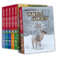 西顿野生动物故事集 套装6册 走进神奇的大自然系列 西顿动物记 彩图版