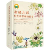 新疆北部野生维管植物图鉴