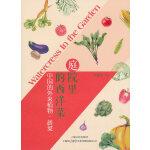 庭院里的西洋菜——中国的外来植物·蔬菜