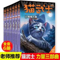 全6册猫武士三部曲三力量新译本 预视的力量暗夜长影中小学生课外书8-12岁 三年级课外四五年级阅读儿童书10-15岁儿童