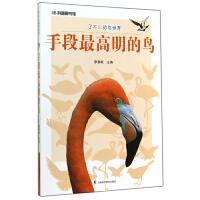 手段明的鸟/了不起的鸟世界/科普图书馆