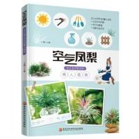 空气凤梨:无土也可养活的懒人植物