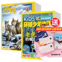 环球少年地理+博物组合杂志订阅2020年全年杂志订阅 2月起订 儿童期刊杂志