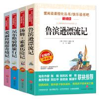 鲁滨孙漂流记+汤姆・索亚历险记+尼尔斯骑鹅旅行记+爱丽丝漫游奇境(六年级阅读套装共4册)