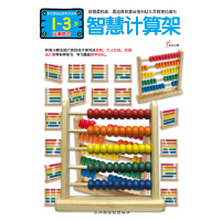 多元智能益智积木游戏-智慧计算架(1-3岁运算能力)