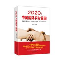 2020:中国消除农村贫困――全面建成小康社会的精准扶贫、脱贫攻坚研究