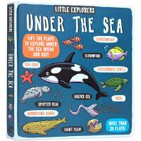 英文原版绘本 Little Explorers Under the Sea 小探险家系列之海洋 纸板翻翻书 海底世界