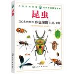 大自然博物馆·百科珍藏图鉴系列--昆虫