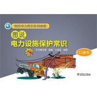 图说电力常识系列画册 图说电力设施保护常识(口袋书)