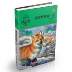 动物小说大王沈石溪・品藏书系:再被狐狸骗一次(升级版)