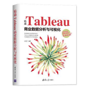 精通Tableau商业数据分析与可视化(pdf+txt+epub+azw3+mobi电子书在线阅读下载)