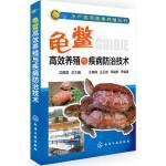 水产高效健康养殖丛书--龟鳖高效养殖与疾病防治技术