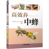 养中蜂 中蜂蜜蜂养殖技术书 养蜂实用手册书 蜜蜂养殖技术大全养殖蜜蜂 中华蜂土蜂中蜂饲养新技术 农业科学养殖技术大全图