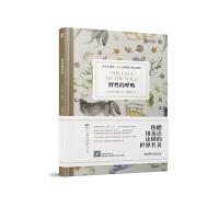 【现货新版】床头灯3000词系列英语学习读本(英汉对照)野性的呼唤 初中高中英语读物