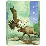 椋鸠十动物小说 爱藏本09 野兽岛,椋鸠十,二十一世纪出版社,9787556823994