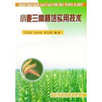 小麦三高栽培实用技术
