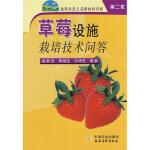 正版包票 草莓设施栽培技术问答 孟新法,陈端生,王坤范 中国农业出版社 9787109114357文轩图书