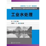 给排水科学与工程专业应用与实践丛书--工业水处理