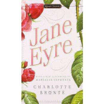 原版小说 简爱 全英文版原版 Jane Eyre原著 英文原版书 经典世界名著 正版进口英语书籍