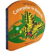 英文原版 Caterpillar to Butterfly 精装 创意折叠翻翻书 毛毛虫变蝴蝶 幼儿STEM读物 科学