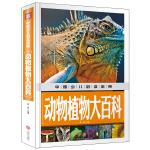 动物植物大百科(内容丰富、超高品质的全彩豪华精装青少年读物大全!内容经典+知识丰富+装帧精致+设计新颖,从学前到中学,