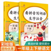 万向思维 看拼音写词语 生字词同步作业本 一年级 语文 上册+下册 2本套装部编人教版小学生语文同步